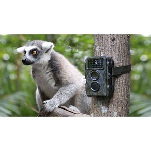 Trail Camera Technaxx TX-69 - 600 ms - 12 Mégapixels - microSD - Imperméable