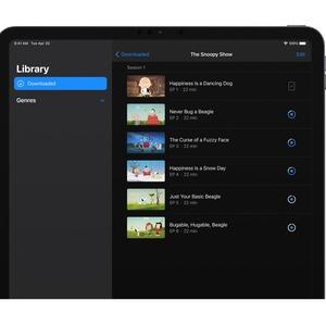 Apple iPad Pro (5th Generation) Tablet - 32,8 cm (12,9 Zoll) - M1 Octa-Core - 8 GB RAM - 256 GB - iPadOS 14 - Grau - Apple