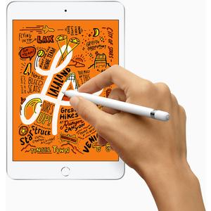 Apple iPad mini (5th Generation) Tablet - 20,1 cm (7,9 Zoll) RAM - 64 GB - Grau - 2048 x 1536 - Retina-Display, True-Tone-