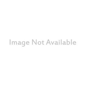 Dell Energy Tasche (Rucksack) für 38,1 cm (15 Zoll) Notebook - Schwarz, Blau - Polyester Basis, Plüsch Pocket - Robuster R